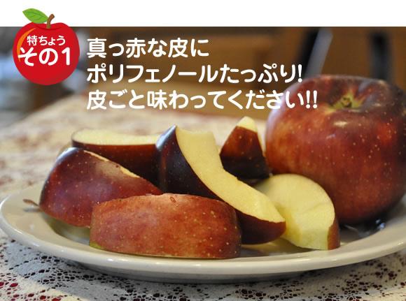 原りんご園の秋映